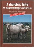 A charolais fajta és magyarországi tenyésztése - Békési Gyula, Béres Pál, Tőzsér János
