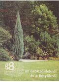 88 színes oldal az örökzöldekről és a fenyőkről - Czáka Sarolta