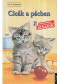 Cicák a pácban - Daniels, Lucy