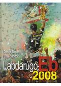Labdarúgó-Eb 2008 - Dénes Tamás, Éber Sándor