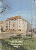 Kecskemét - Cifrapalota Képtár - Dercsényi Balázs