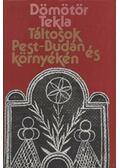 Táltosok Pest-Budán és környékén - Dömötör Tekla