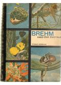 Brehm - Kako zive zivotinje - Edmund, Alfred