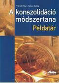 A konszolidáció módszertana - Fridrich Péter, Simon Szilvia