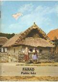 Parád - Palóc ház - Füzes Endre