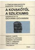 A kovakőtől a szilíciumig - Giovannini, Giovanni (szerk.)
