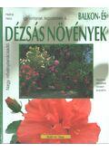 Balkon- és dézsás növények - Halina Heitz