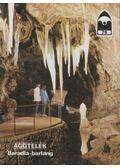 Aggtelek - Baradla-barlang - Hazslinszky Tamás, Székely Kinga