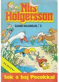 Nils Holgersson újabb kalandjai 3.