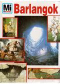 Barlangok - Portner, David E.