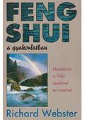 Feng shui a gyakorlatban - Richard Webster