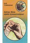Adrian Mole újabb kínszenvedései - Sue Townsend