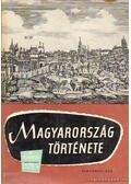 Magyarország története az őskortól 1526-ig I. kötet - Székely György, Elekes Lajos, Lederer Emma