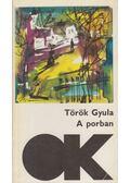 A porban - Török Gyula