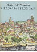 Magyarország virágzása és romlása - Varga Domokos