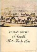 A barokk Pest-Buda élete - Zoltán József