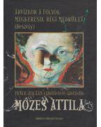 Árvízkor a folyók megkeresik régi medrüket - Panek Zoltán, Mózes Attila