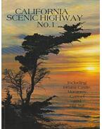 California Scenic Highway No. 1. - --