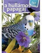 A hullámos papagáj - 1x1 kalauz - .