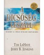 A dicsőség leszáll - LaHaye, Tim, Jenkins, Jerry B.