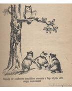 A három kis medvebocs - György László