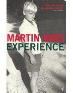 Experience - Amis, Martin
