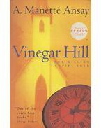 Vinegar Hill - ANSAY, A. MANETTE