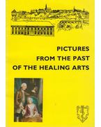 Pictures fromt the past of the healing arts - Antal József, Fekete Sándor