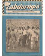 Labdarúgás 1958. augusztus 8. szám - Barcs Sándor