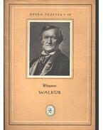 Walkür - Wagner