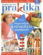 Praktika 2008. július 7. szám - Boda Ildikó (főszerk.)