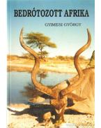 Bedrótozott Afrika - Gyimesi György
