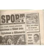 Nemzeti Sport 1993. október (hiányos) - Borbély Pál