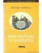 Békés pusztulása és újjászületése - Molnár Ambrus