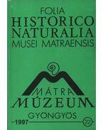 Mátra Múzeum, Gyöngyös 1997. 22. - Varga András