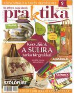 Praktika 2010 szeptember 9. szám - Boda Ildikó (főszerk.)
