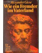 Wie ein Fremder im Vaterland - Giese, Alexander
