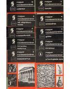 Magyar művészettörténet 1-10. (10 db) (teljes sorozat) - Entz Géza, Garas Klára, Végvári Lajos, Passuth Krisztina, Dercsényi Dezső, Zádor Anna, Dienes István, Radocsay Dénes, Csorba Géza