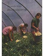 Zöldségeskertünk - Szalva Péter