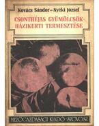 Csonthéjas gyümölcsök házikerti termesztése - Nyéki József, Kovács Sándor