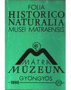Mátra Múzeum, Gyöngyös 1995. 20. - Varga András