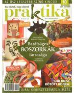 Praktika 2009. október 10. szám - Boda Ildikó (főszerk.)