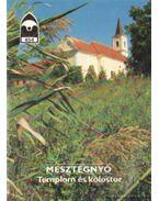 Mesztegnyő - Templom és kolostor - Dercsényi Balázs