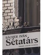 Sétatárs - Bacher Iván