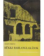 Bükki barlanglakások - Bakó Ferenc