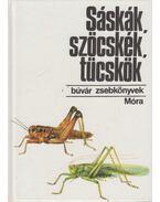 Sáskák, szöcskék, tücskök - Bakonyi Gábor