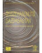 Összehasonlító gazdaságtan - Bara Zoltán, Szabó Katalin