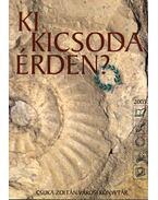 Ki kicsoda Érden? 2005 - Bazsóné Megyes Klára