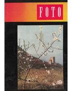 Fotó 1960/3 - Bence Pál