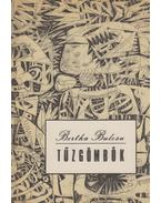 Tűzgömbök - Bertha Bulcsu